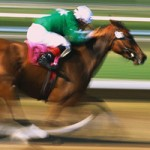 Analyze a horse racing