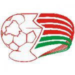 Belarusian Cup