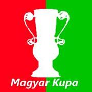 Taça da Hungria